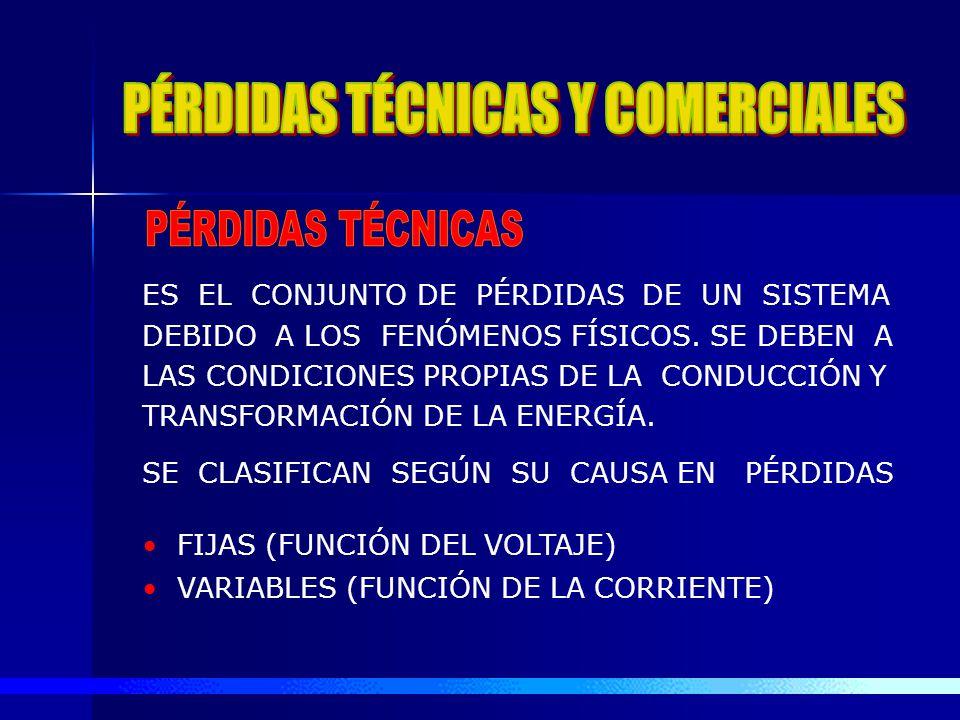 PÉRDIDAS TÉCNICAS Y COMERCIALES