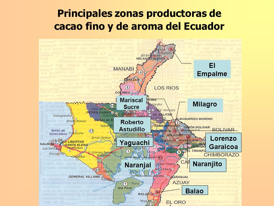 Principales zonas productoras de cacao fino y de aroma del Ecuador