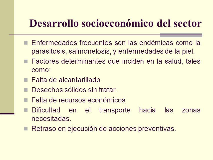 Desarrollo socioeconómico del sector