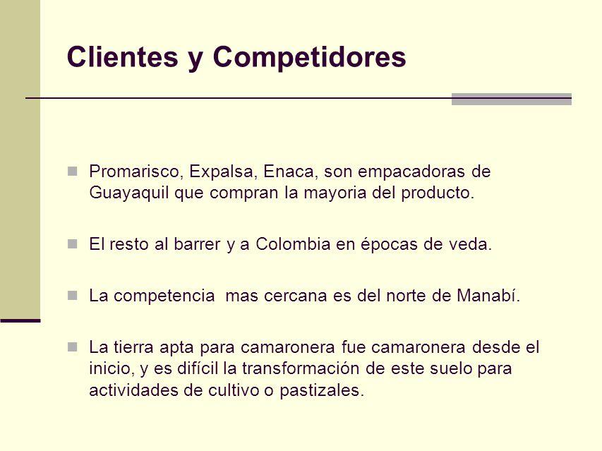 Clientes y Competidores