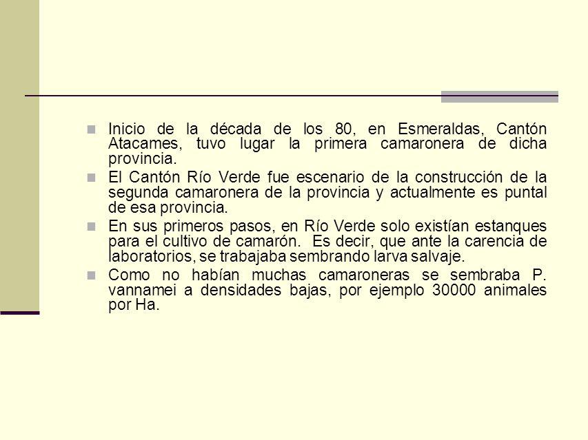 Inicio de la década de los 80, en Esmeraldas, Cantón Atacames, tuvo lugar la primera camaronera de dicha provincia.