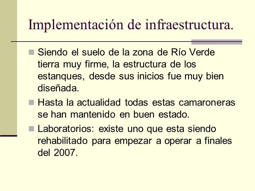 Implementación de infraestructura.