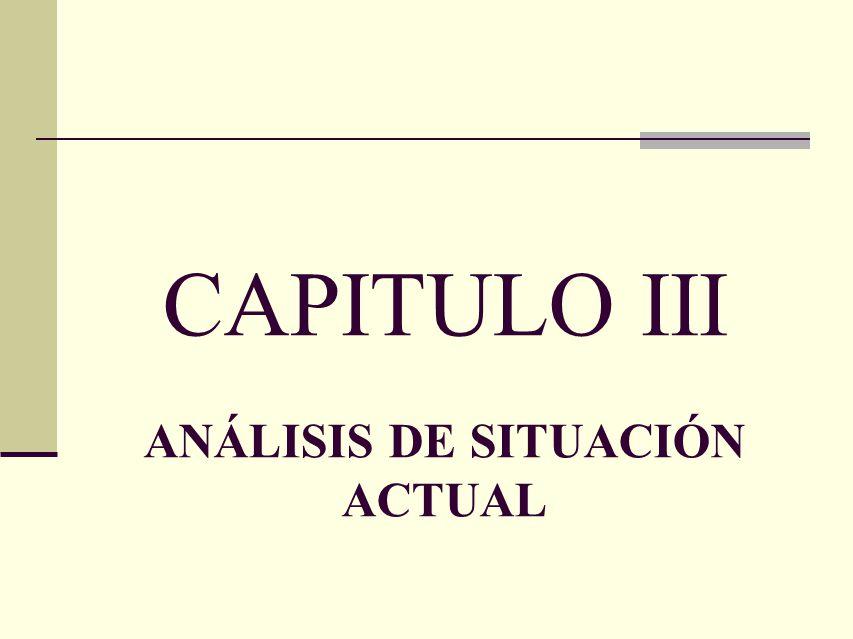 CAPITULO III ANÁLISIS DE SITUACIÓN ACTUAL