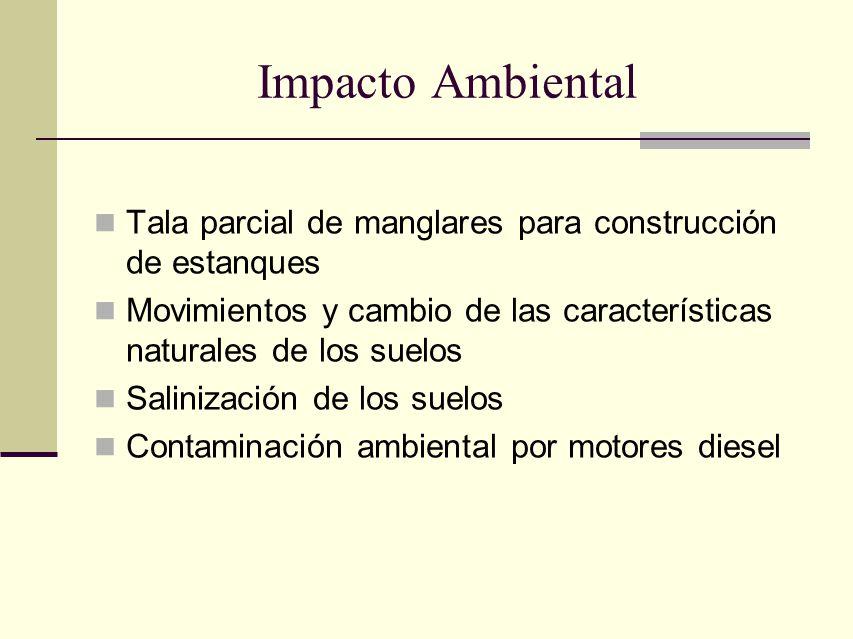 Impacto Ambiental Tala parcial de manglares para construcción de estanques. Movimientos y cambio de las características naturales de los suelos.