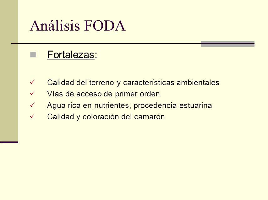 Análisis FODA Fortalezas: