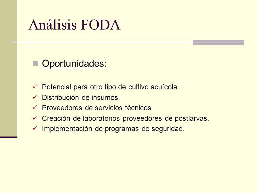 Análisis FODA Oportunidades: