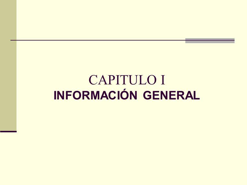 CAPITULO I INFORMACIÓN GENERAL