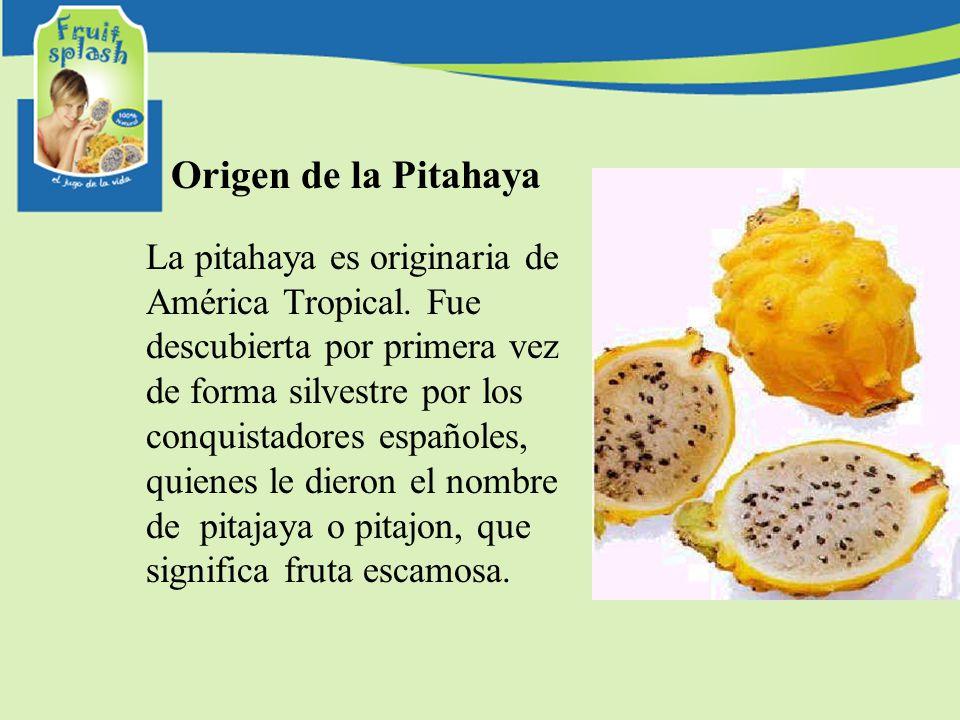 Origen de la Pitahaya