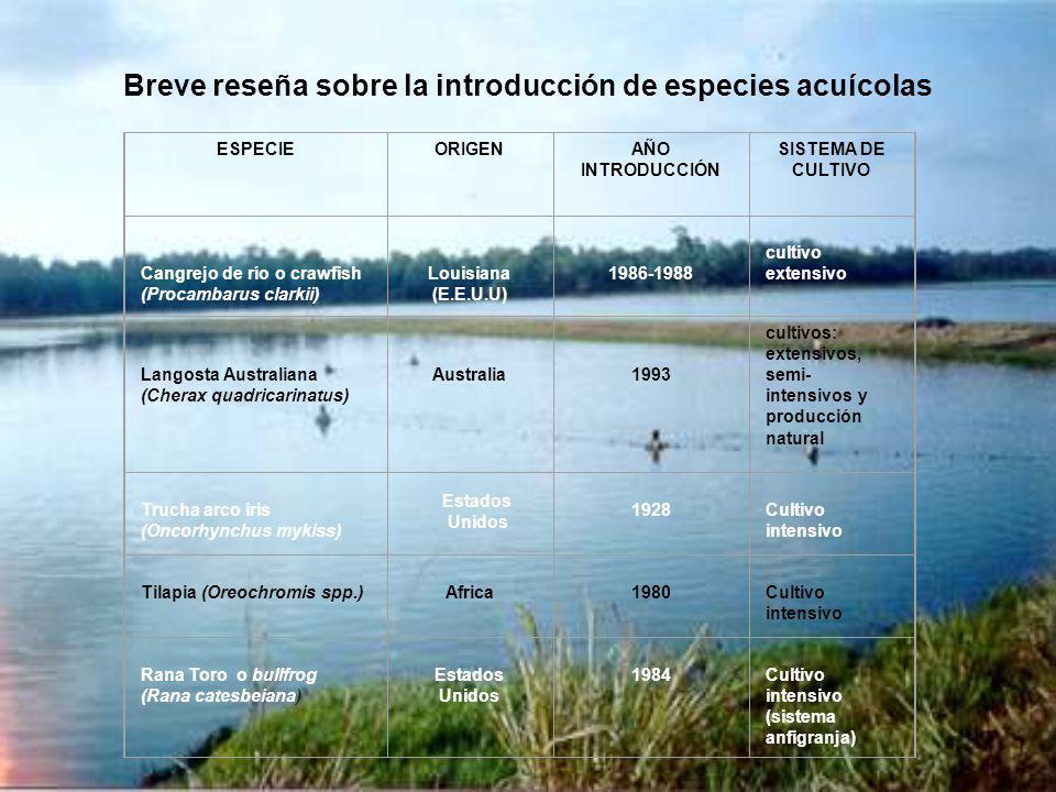 Breve reseña sobre la introducción de especies acuícolas