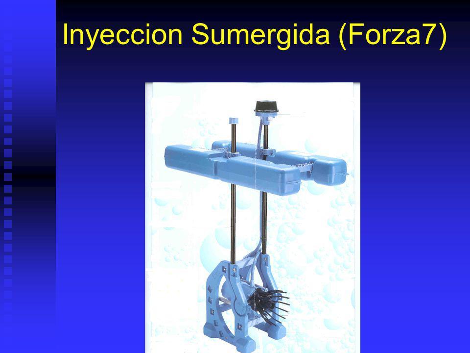 Inyeccion Sumergida (Forza7)