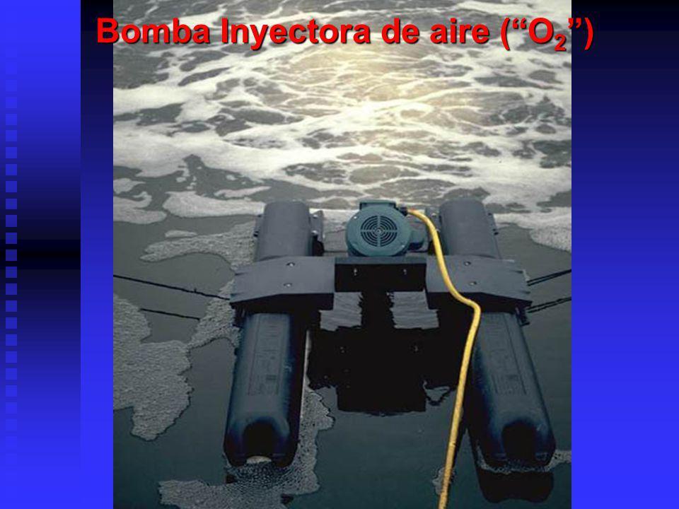 Bomba Inyectora de aire ( O2 )
