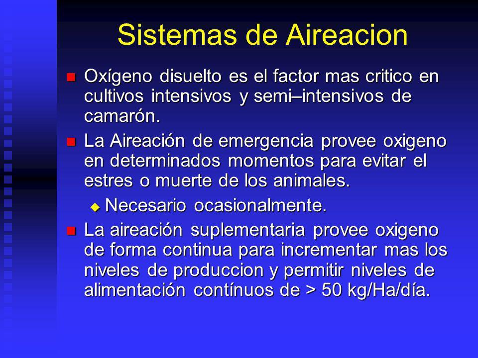 Sistemas de Aireacion Oxígeno disuelto es el factor mas critico en cultivos intensivos y semi–intensivos de camarón.