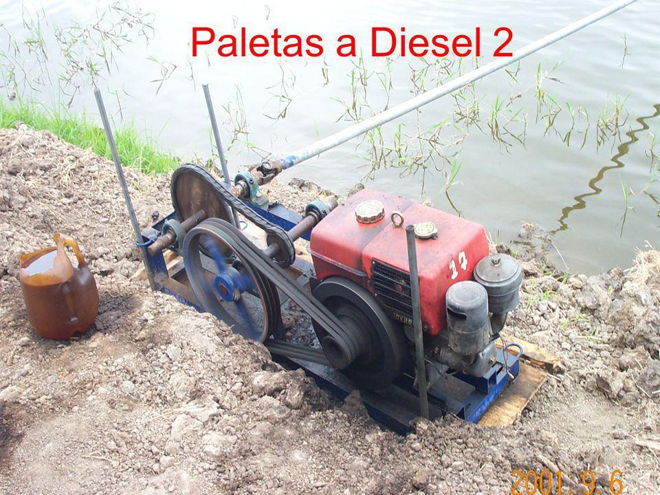Paletas a Diesel 2