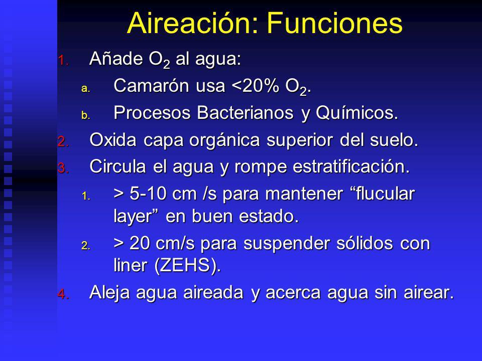 Aireación: Funciones Añade O2 al agua: Camarón usa <20% O2.