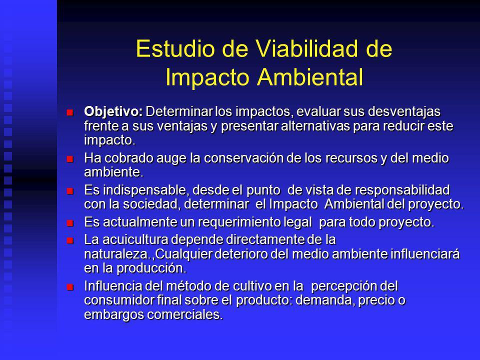 Estudio de Viabilidad de Impacto Ambiental