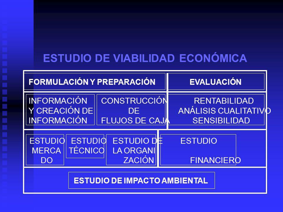 ESTUDIO DE VIABILIDAD ECONÓMICA