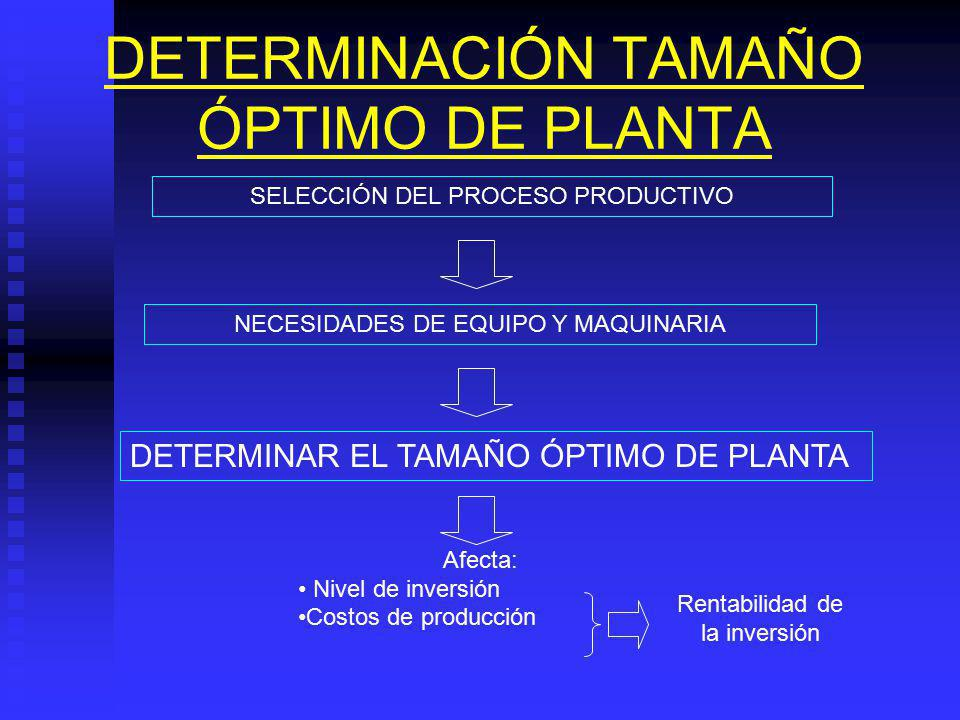DETERMINACIÓN TAMAÑO ÓPTIMO DE PLANTA
