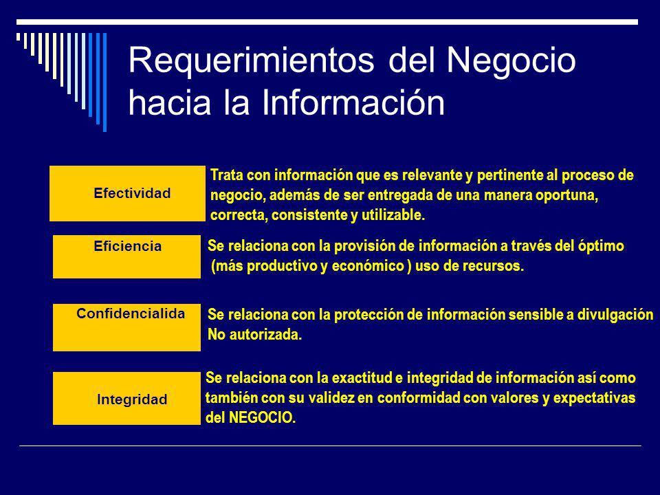 Requerimientos del Negocio hacia la Información