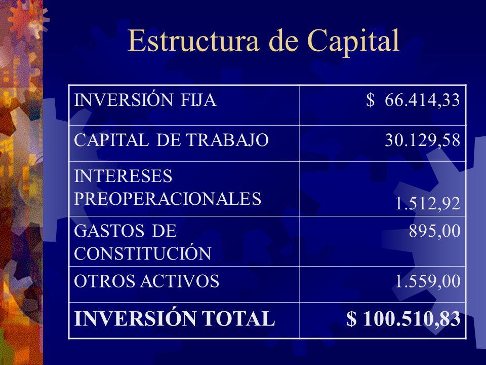Estructura de Capital INVERSIÓN TOTAL $ 100.510,83 INVERSIÓN FIJA