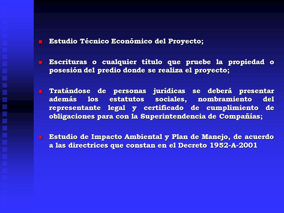 Estudio Técnico Económico del Proyecto;
