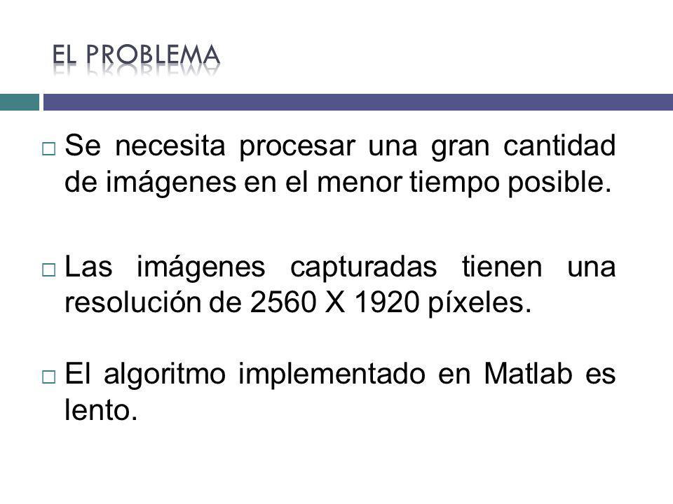 Las imágenes capturadas tienen una resolución de 2560 X 1920 píxeles.