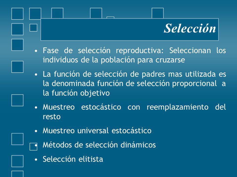 Selección Fase de selección reproductiva: Seleccionan los individuos de la población para cruzarse.