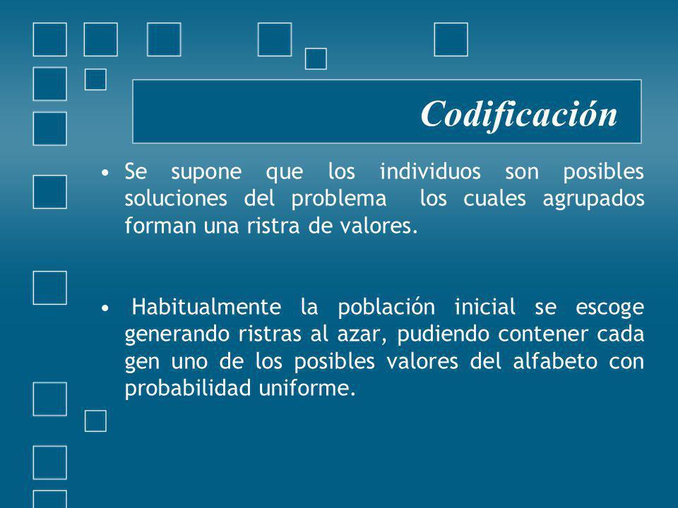 Codificación Se supone que los individuos son posibles soluciones del problema los cuales agrupados forman una ristra de valores.
