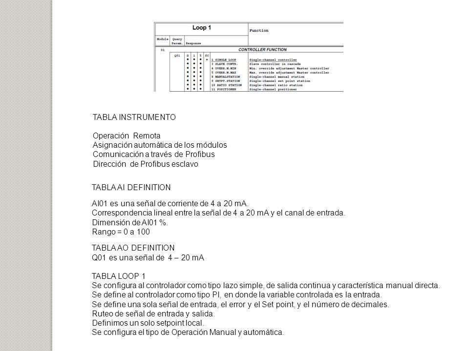 TABLA INSTRUMENTO Operación Remota. Asignación automática de los módulos. Comunicación a través de Profibus.