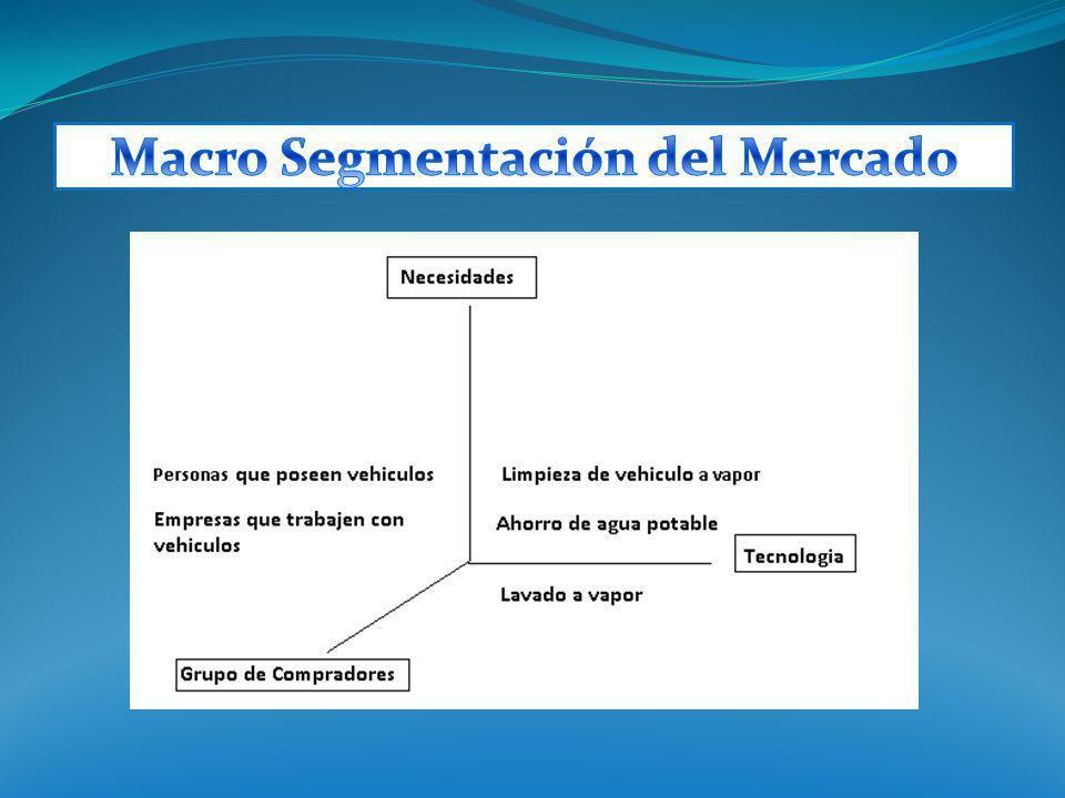 Macro Segmentación del Mercado
