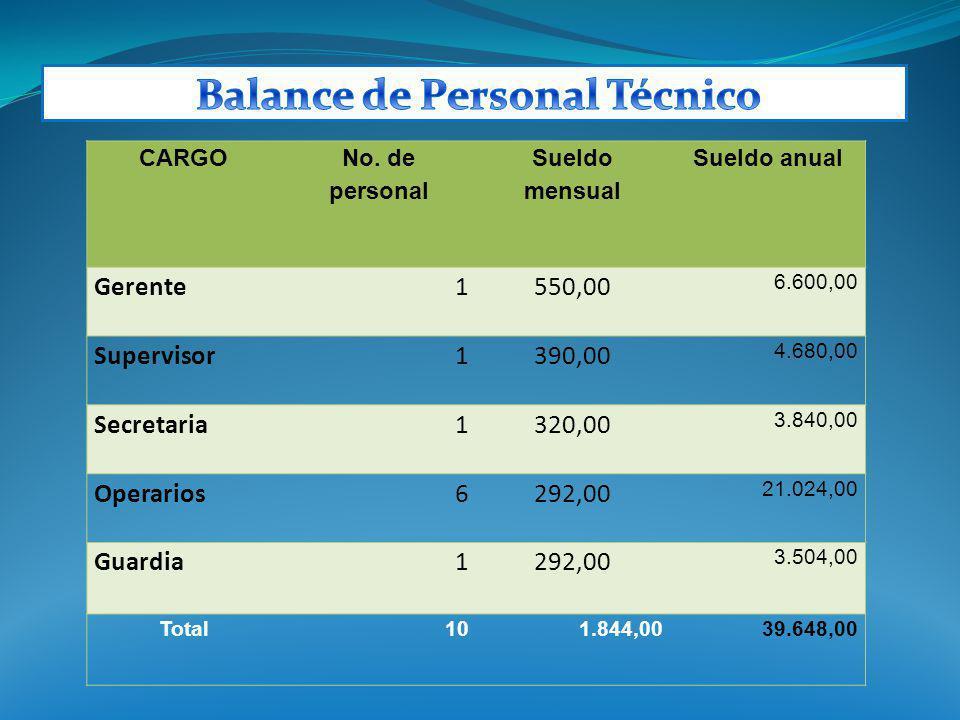 Balance de Personal Técnico