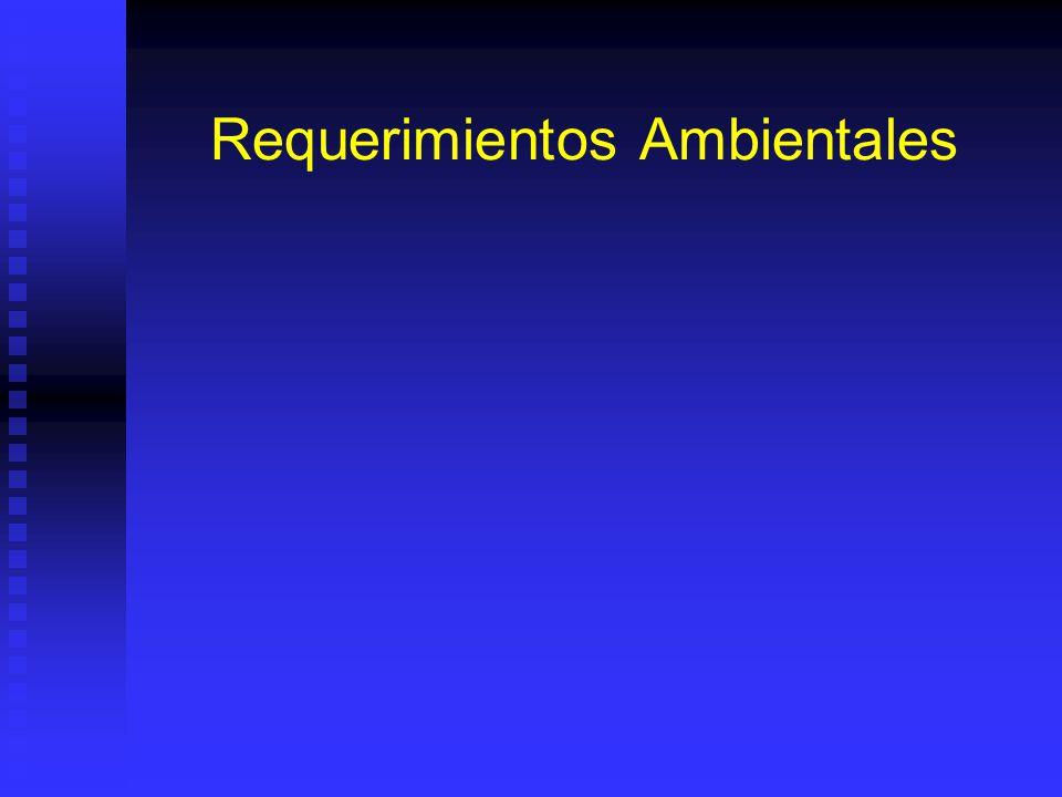 Requerimientos Ambientales
