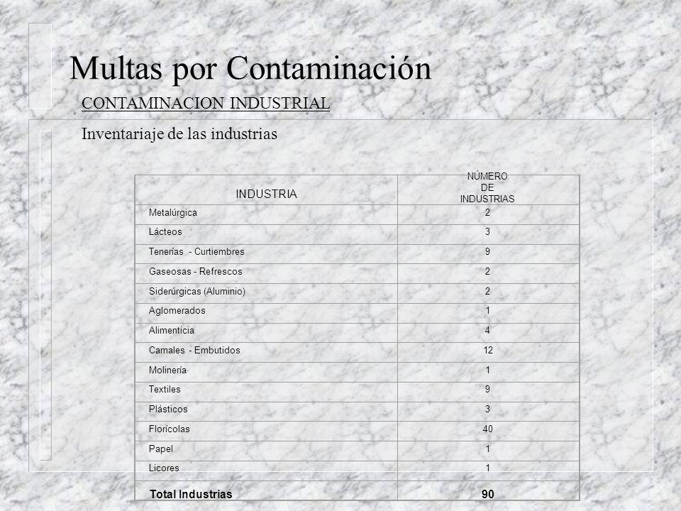 Multas por Contaminación