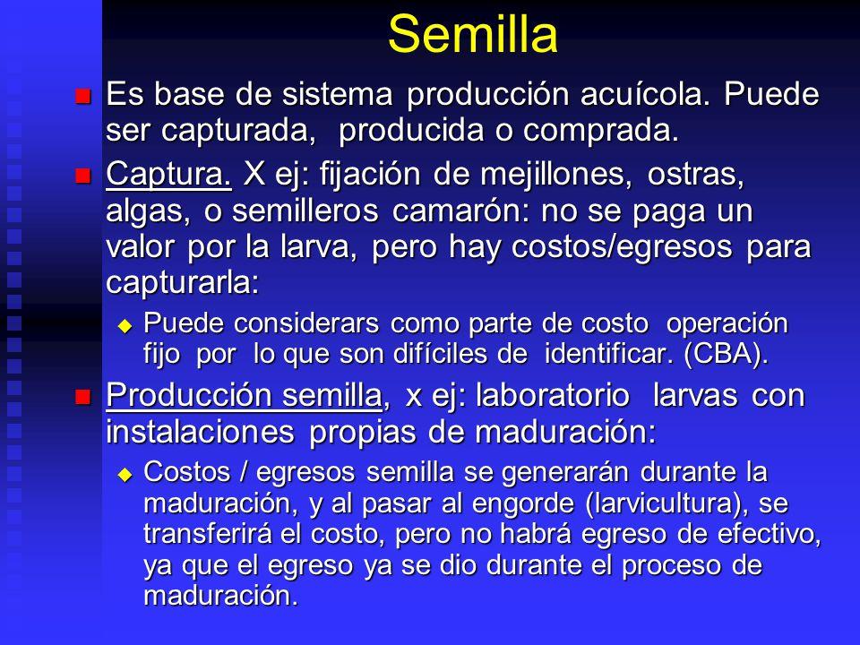 Semilla Es base de sistema producción acuícola. Puede ser capturada, producida o comprada.