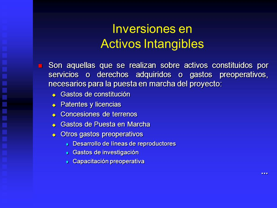 Inversiones en Activos Intangibles