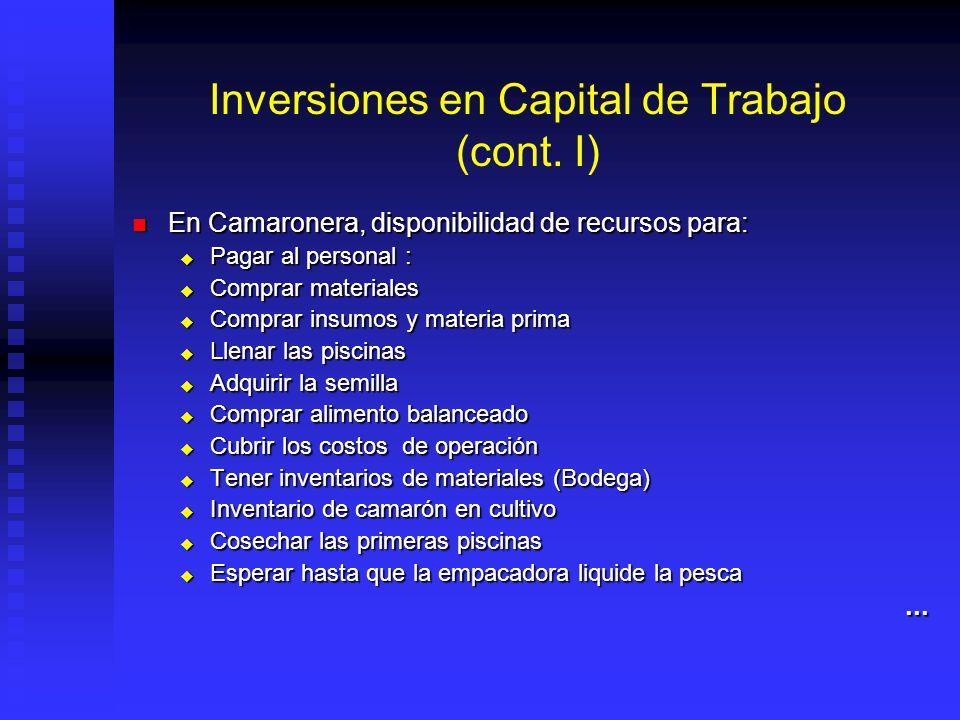 Inversiones en Capital de Trabajo (cont. I)