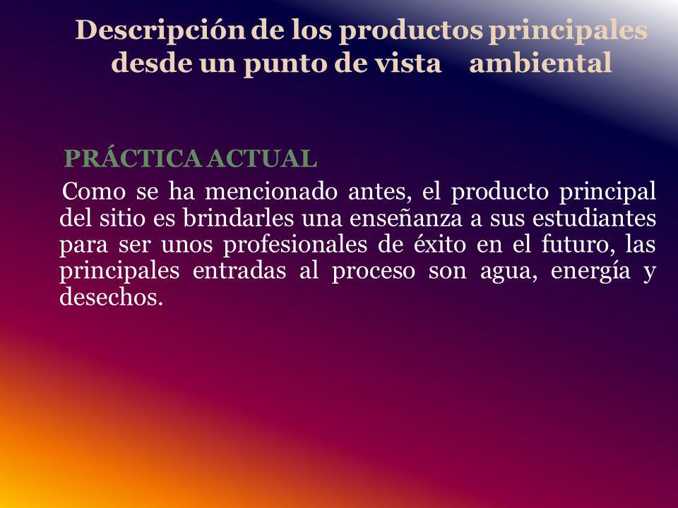 Descripción de los productos principales desde un punto de vista ambiental