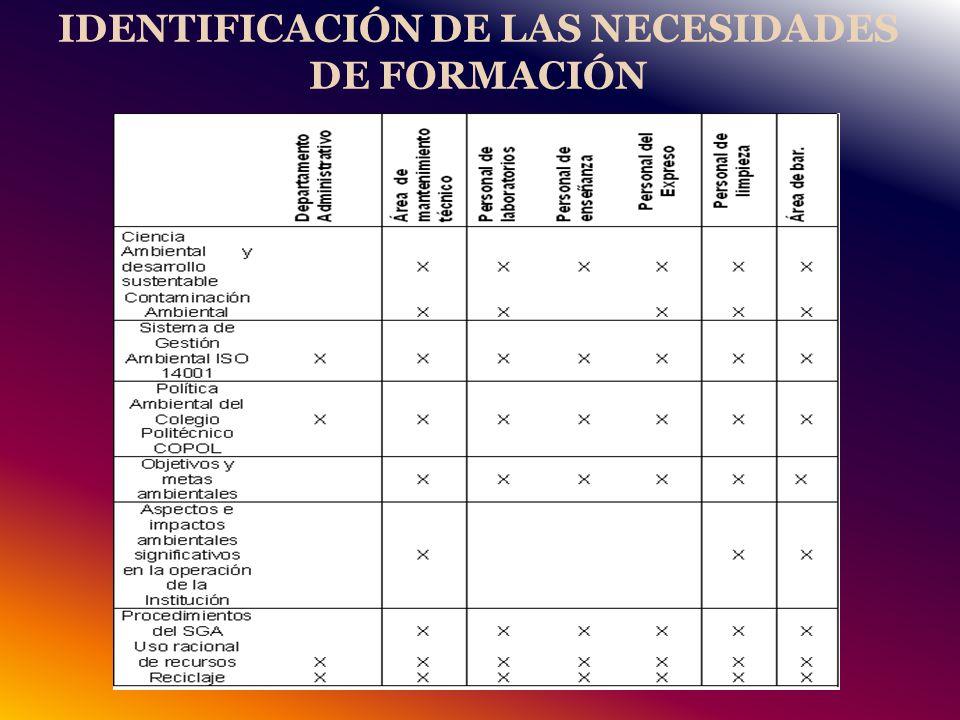 IDENTIFICACIÓN DE LAS NECESIDADES DE FORMACIÓN