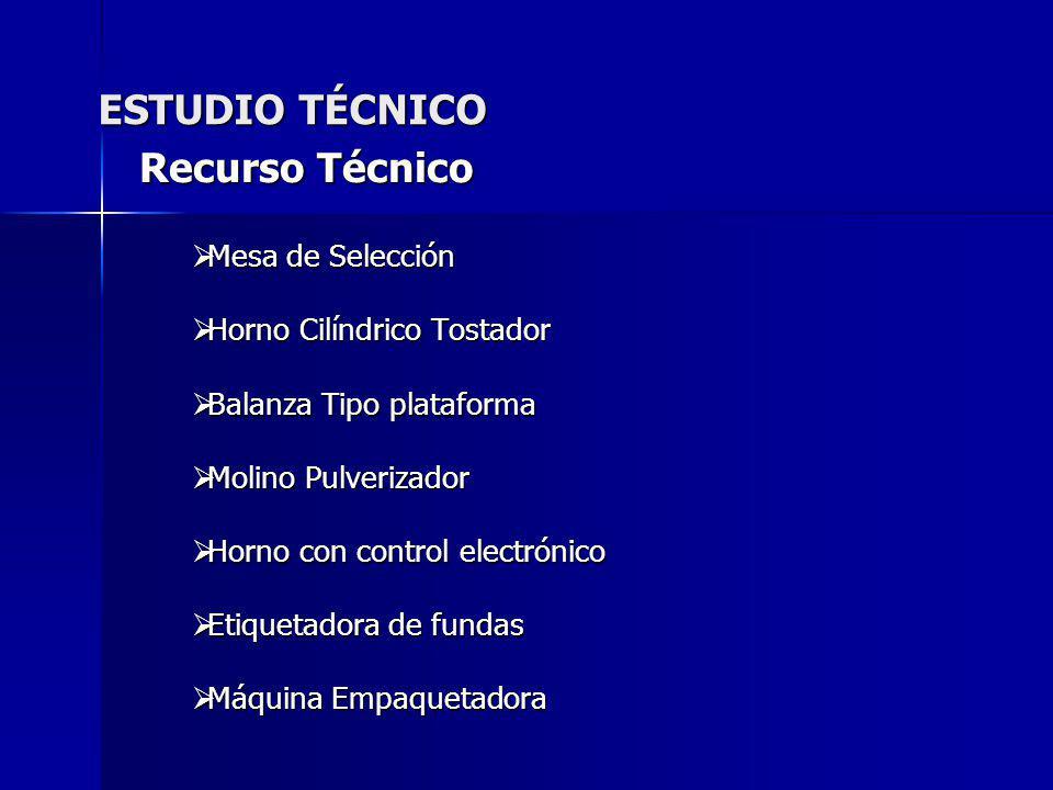 ESTUDIO TÉCNICO Recurso Técnico Mesa de Selección