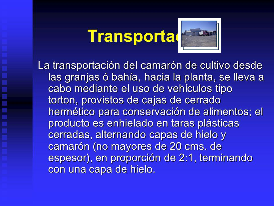 Transportación.