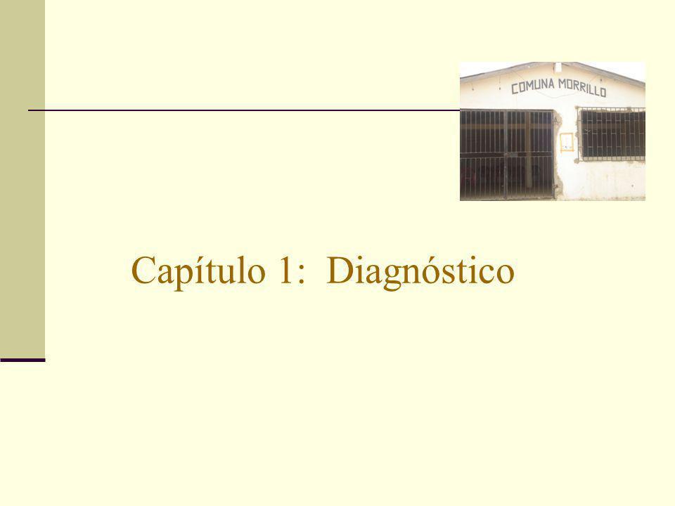 Capítulo 1: Diagnóstico