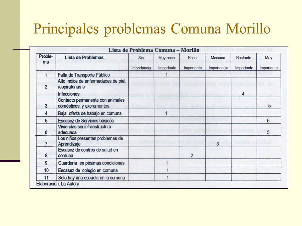 Principales problemas Comuna Morillo