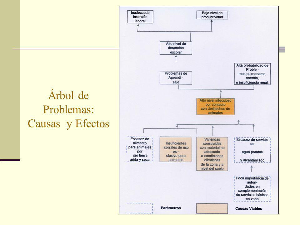 Árbol de Problemas: Causas y Efectos