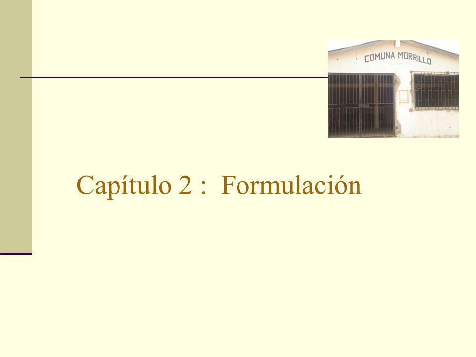 Capítulo 2 : Formulación