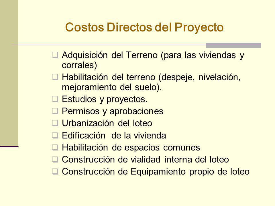 Costos Directos del Proyecto