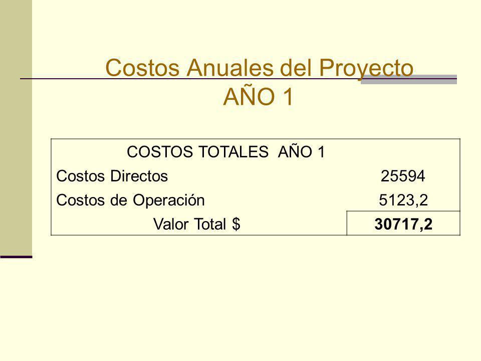 Costos Anuales del Proyecto AÑO 1