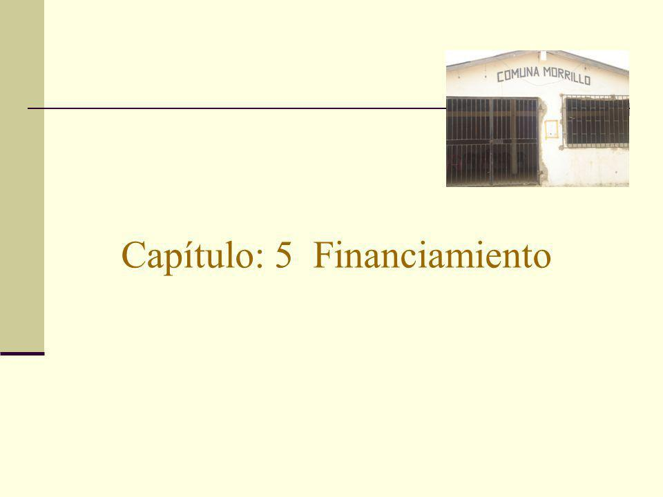 Capítulo: 5 Financiamiento