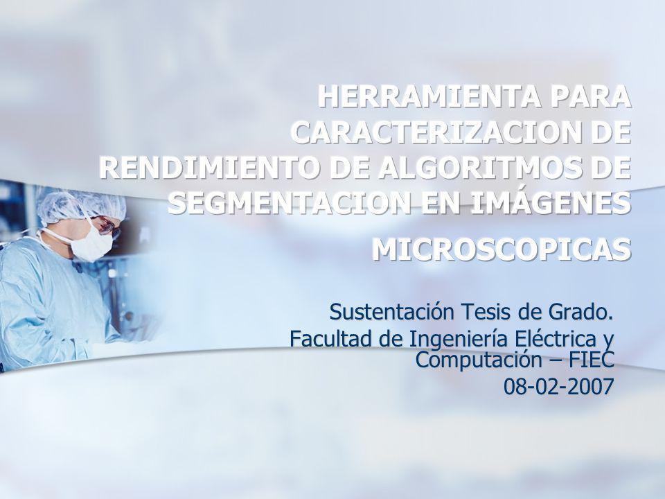 HERRAMIENTA PARA CARACTERIZACION DE RENDIMIENTO DE ALGORITMOS DE SEGMENTACION EN IMÁGENES MICROSCOPICAS