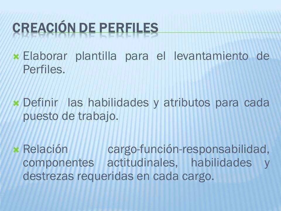 01/04/2017 CREACIóN DE PERFILES. Elaborar plantilla para el levantamiento de Perfiles.