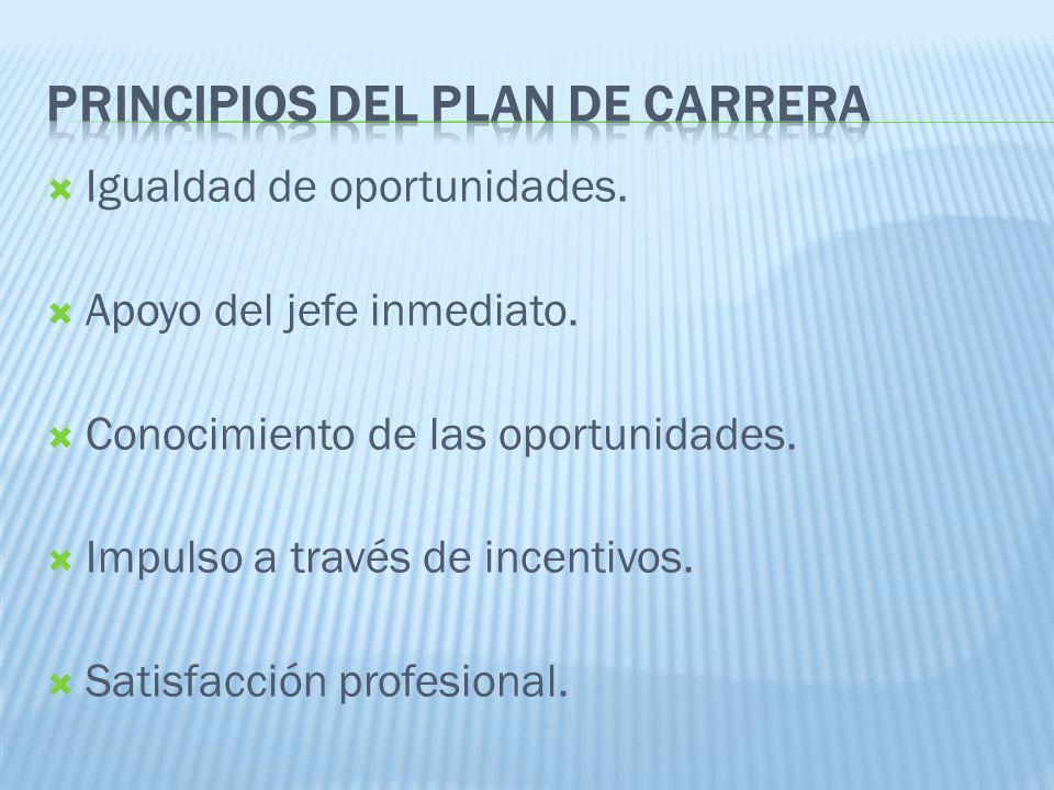 Principios del plan de carrera
