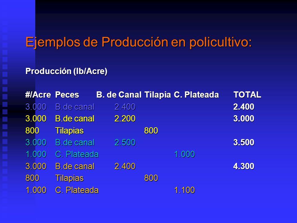 Ejemplos de Producción en policultivo: